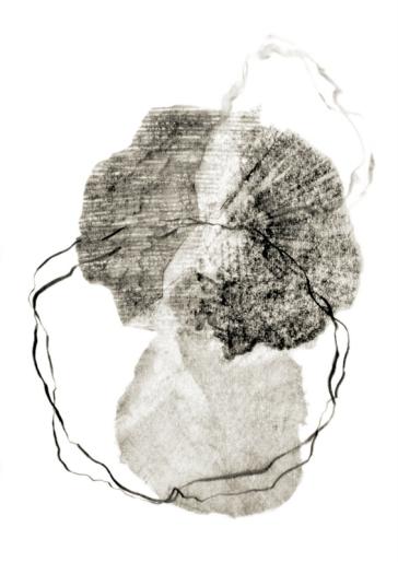Metamorphosis 8 - Graphite on paper